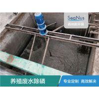 Seanus印染废水高效液体除磷剂