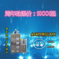 旭恩广州市自然循环锅炉生物质颗粒蒸汽发生器100KG工业设备