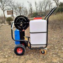 人气推荐园林手推式电动喷雾器菜市场消毒灭蚊机车间除尘洒水机