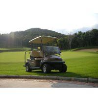 卓越2座電動高爾夫球車,兩座高爾夫球車價格是多少