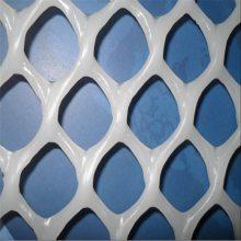 养雏鸡专用网 塑料养殖网厂家 圈山养殖网