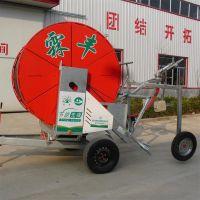 果园卷盘式浇地机 农业用移动喷灌设备霖丰畅销小型JP系列喷灌机