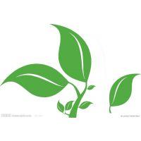 亳州市谯城区药美种植专业合作社