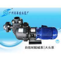羊城牌自吸泵|50052H|大头泵|氟塑料耐酸碱泵|羊城泵业|广州水泵厂|东莞水泵厂