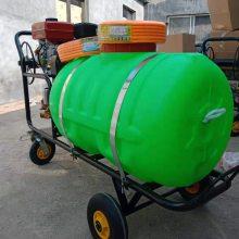 多用途300L喷雾器 桃林苹果树灭虫喷雾器 澜海生产