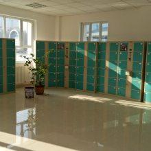 供应新疆地区超市电子存包柜厂家