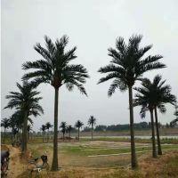 厂家供应仿真椰子树假海南椰人造大型树商场装饰水上乐园园林景观厂家直销