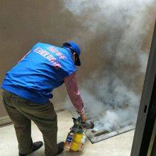 酒店宾馆灭蟑螂烟雾机 无色无味手提烟雾机 热力烟雾机生产厂家