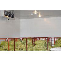 商丘蔬菜保鲜冷库|冷库建造|小型冷库|冷库造价表|水果保鲜库