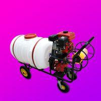 亚博国际真实吗机械 小方向盘式喷杆喷药设备 电动喷雾机 轻便式家用小型打药机 电动养殖场消毒打药机