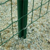 修路铁丝网 兴来棱形铁丝网生产 镀锌围栏网厂