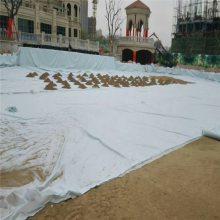 北京防渗复合土工膜 鱼塘防渗膜 河道防渗土工膜 6米防渗复合膜
