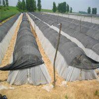 密目大棚遮阳网 工地防尘盖土网 防尘网盖土网遮阳网