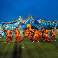 专业定制舞龙舞狮器材 暖场年会路演 旅游景点舞狮表演道具蓝金龙
