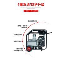 大泽动力内燃式汽油 柴油2 4 6寸自吸泵