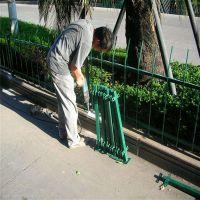 街道绿化带围栏 市政道路栅栏 专业护栏网