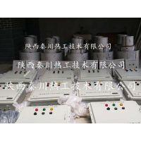厂家直销焦炉净煤气自动放散点火装置厂家-秦川热工