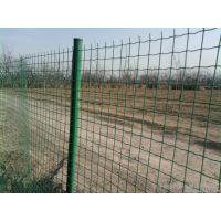 优质养鸡种菜隔离栏 包塑铁线隔离栏围厂