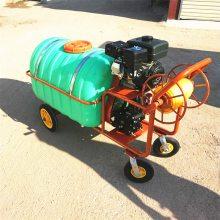 蔬菜基地灭虫打药机 乘坐式三轮打药车 宏程风送式打药机