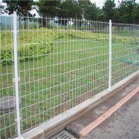 别墅护栏 开发区护栏网 公园围栏网
