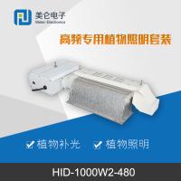 HID-1000W高频植物照明套装 植物补光专用镇流器