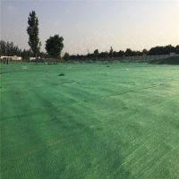 安平县盖土绿网厂家 平挂遮阳网 北京遮阳网
