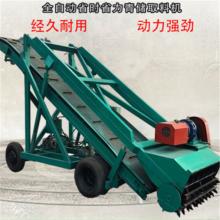 牛羊青草取料机 秸秆青储取料机 养殖设备取草机