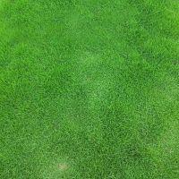 聚乙烯围挡户外人造草皮 公园绿化展览运动人造草皮 2公分高尔夫球场果岭专用草