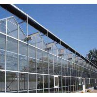 玻璃温室/山东鑫泽供应全自动智能化玻璃温室