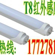 陕西宝鸡地下车库照明节能改造LED雷达感应灯管厂 t8雷达感应车库灯