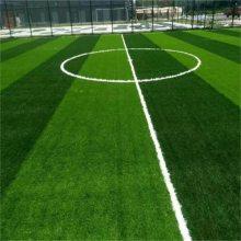 环保草坪 塑料草坪 工程围挡外墙绿化草坪