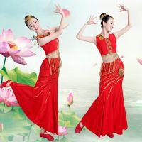 民族舞蹈服成人舞蹈服弹力傣族舞服装广场舞服装民族服装