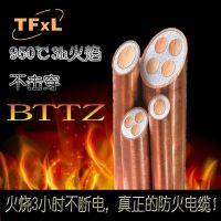 泰丰线缆厂家直销高低压电力电缆、防火电缆、低烟无卤电缆BTTZ\BTTRZ\BTLY等