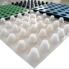 武威供应塑料排水板具有存水排水作用的蓄排水板