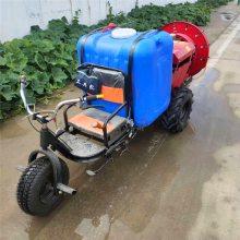 亚博国际真实吗牌 新型汽油打药机 手推式园林喷雾器 四轮手推式园林打药机 价格