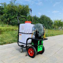 手推式小区绿化喷雾机 充电式农药喷雾机 自动卷管式打药机价格