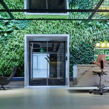 无土生态植物墙 墙体景观垂直绿化 无土栽培 生态景观北京禧雅世家