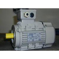 厂家促销让利德国AC-MOTOREN转矩电机