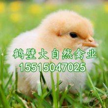 鹤壁市大自然禽业有限公司