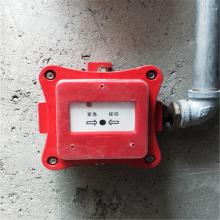 厂家直销 防爆紧急按钮 新黎明防爆控制箱 防爆型声光报警器
