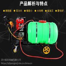 热销高压喷雾器图片/喷洒叶面肥的打药泵