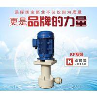 液下泵型号 昆山国宝立式液下泵 经济实惠