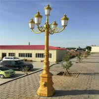 济宁厂家制造别墅照明灯 广场道路欧式景观灯 中 高杆 led灯