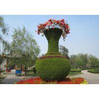 成都真植物造型 真植物雕塑定制 五色草景观造型