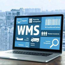 物流仓储管理系统_仓储物流wms系统_仓储管理系统发展