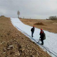 700克短纤复合土工膜价格 河道人工湖防渗效果好