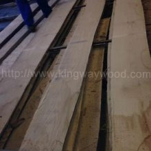 德国金威木业进口欧洲红橡 橡木 实木板 板材 毛边板 进口木材 木板 AB 26/27/28/29