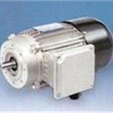 新品PLEIGER泵+电机6921007020