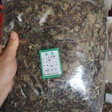 菊苣根价格多少钱 菊苣根多少钱一公斤