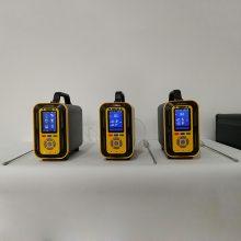 TD600-SH-B-CH4甲烷分析仪泵吸式采样可选配采样手柄检测高温环境